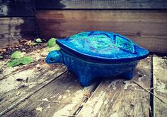 Bitossi turtle. Aldo Londi. Mid century Italian pottery.