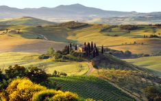 Het idyllische Toscaanse landschap, met zijn golvende heuvels, kleine dorpjes en stadjes en natuurlijk cypressen.