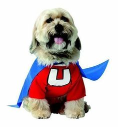The Underdog dog costume is sure to put a smile on your pup's face and have that tail a waggin'. One piece Underdog costume with attached cape, so adorable!