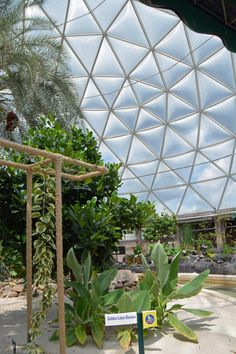 You don't usually first notice the dome during the greenhouse portion of the Living with the Land ride at EPCOT. However, I've used the top of our boat and a Golden Lotus banana to highlight the de… Dining Plan Disney World, Disney World Planning, Disney World Trip, Disney Vacations, Disney Parks, Disney Worlds, Disney World Tips And Tricks, Disney Tips, Epcot Center