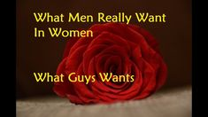 What Men Really Want In Women - What Guys Wants