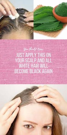 Just Apply This On Your Scalp And All White Hair Will Become Black Again – Healthy Diet Tips Healthy Diet Tips, Good Healthy Recipes, Health And Nutrition, Health Tips, Health Facts, Wellness Fitness, Fitness Diet, Lunge, Muscle Building Workouts