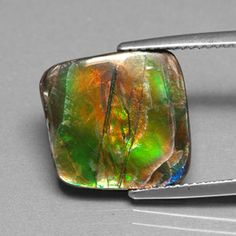 """""""Ammonite is believed to possess healing powers and is often added to medicine bundles.  Feng Shui followers believe Ammolite has the power to detoxify the body and improve overall well being by improving the body's flow if energy. Feng Shui supporters also believe that each different color of Ammolite influences the wearer differently."""""""