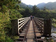 [Kosugidani Bridge] - 鹿児島・屋久島・小杉谷橋 - Yakushima, Kagoshima, Japan
