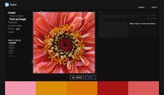 15 Hand Picked Color Palette and Color Scheme Generators