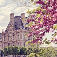Chateau in Paris, France. Paris In Spring, Oh Paris, Springtime In Paris, Japan Spring, Pink Paris, The Places Youll Go, Places To See, Foto Blog, Louvre