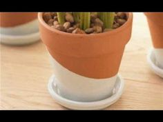 How to Paint Terra-Cotta Pots - YouTube