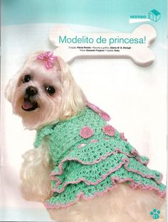 Cute for dogs Cheap Dog Clothes, Large Dog Clothes, Pet Clothes, Crochet Dog Sweater Free Pattern, Dog Pattern, Dog Crochet, Crochet Gratis, Pet Fashion, Animal Fashion