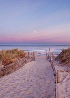 Ainsi, nous vous invitons aujourd'hui au voyage et vous faisons découvrir les plus belles plages de notre beau pays. Alors ouvrez grand les yeux, laissez-vous transporter et respirez ce bon air iodé, comme si vous y étiez ! #plage #été #vacances Nature Aesthetic, Beach Aesthetic, Travel Aesthetic, Adventure Aesthetic, Summer Aesthetic, Aesthetic Collage, Aesthetic Backgrounds, Aesthetic Wallpapers, Country Backgrounds