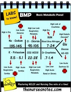 BMP Chem7 Fishbone Diagram explaining labs - From the Blood Book Theses are the Labs you should know Hyponatremia Sodium Lab Value Blood Hyponatremia Mnemonic Nursing Student This is a collection of my Blood Book part of BMP Fishbone diagram explaining the Hyperkalemia Hypokalemia, Na K Cr Hypomagnesemia BUN Creatinine Addisons Dehydration Study Sheets for Nurses NCLEX Tips The Nursing Notes Cheats KAMP 300 free NCLEX Questions on the site! The Nurses Notes