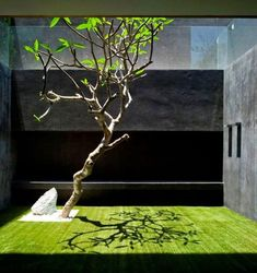 Amazing Minimalist Indoor Zen Garden Design Ideas - Page 18 of 27 Zen Garden Design, Patio Design, Exterior Design, Courtyard Design, Small Courtyard Gardens, Small Courtyards, Atrium Garden, Indoor Courtyard, Modern Courtyard