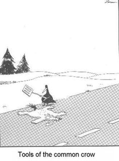 """""""The Far Side"""" by Gary Larson. Tools used by crows and some serious rednecks. Cartoon Jokes, Funny Cartoons, Funny Comics, Funny Memes, Hilarious, Funny Sarcasm, Far Side Cartoons, Far Side Comics, Gary Larson Far Side"""