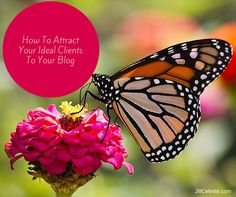 How To Attract Your Ideal Clients To Your Blog | http://www.jillceleste.com/how-to-attract-your-ideal-clients-to-your-blog/