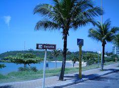 Praia da Bacutia
