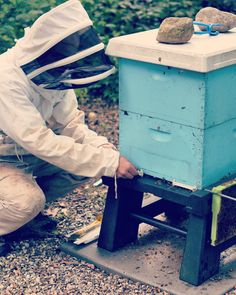 Beekeeper applying our mouse guard!   BeeSmartDesigns.com and there you can find all of our retailers! • • • • #bee #bees #beekeeper #beekeeping #beekeep #beehive #mouseguard #guard #hive #hives #hivestand #apiary #honey #englishgarden #winter #fall #beewinter