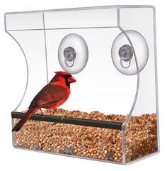 Planted Perfect Window Bird Feeders