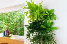 Vertikaler Garten in der Küche, mit einem Living Wall Planter