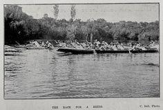 ngaruawahia regatta - Google Search