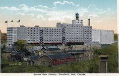Circa 1930 Peterborough Ontario, Peter Robinson, Willis Tower, Building, Travel, Vintage, Viajes, Buildings, Destinations