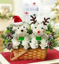 Cute flower arrangement of dogs as Santa and Rudolph