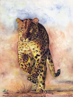 panther painted by Ali Naseri size: Watercolour Painting, Panther, Ali, Instagram, Animals, Panthers, Ant, Black Panther