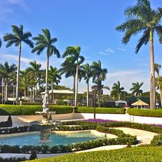 Another beautiful day at Doral! | Instagram