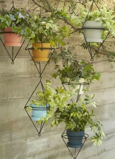Upgrade a boring, blank wall by hanging a flourishing planter. These geometric brackets provide the perfect combination of natural and industrial accents, and they're just plain cool to look at.  Get your own here.