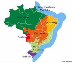 O Brasil tem seu território ocupado por seis grandes biomas terrestres compreendidos por: Amazônia, cujo domínio ocupa 49,29% do território nacional e que é constituída principalmente por Cerrado, cujo domínio ocupa 23,92% do território e que é constituído principalmente por savanas; Mata Atlântica, cujo domínio ocupa 13,04% do território nacional e que é constituída principalmente por Caatinga, cujo domínio ocupa 9,92% do território nacional e que é constituída principalmente por savana…