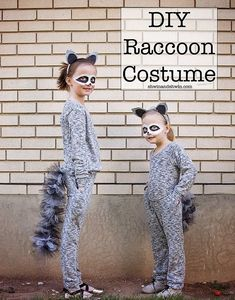 188b5545884ee 28 Best Raccoon Costume images | Raccoon costume, First halloween ...