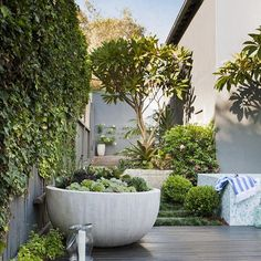 Subtle tones flow throughout this outdoor living space, a hero Frangipani with the perfect oversized Succulent bowl... Nailed it! Design @mikecasscreative Construction @designitlandscapes Plants @exotic_nurseries Styling @adamrobinsondesign #exoticnurseries #nailedit #gardendesign #styling #frangipani #outdoorliving #succulents #pool #summervibes #goodvibes #gardeninspiration #gardendesign #landscape #landscapedesign #tones #plants #succulentbowl #bromeliad #topiary #landscapearchitectur...