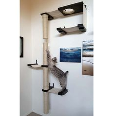 Skyscraper Complex - Cat Hammock Shelves by CatastrophiCreations on Etsy