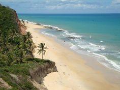 Praia de Jacarecica do Sul; Jequiá da Praia -  ( AL  )  Alagoas  -  Brasil  A Praia de Jacarecica do Sul, situada no município de Jequiá da Praia, selvagem e deserta, a praia é uma das mais bonitas do estado de Alagoas. As belíssimas falésias de cor avermelhada contrastando com o azul do mar, tornam o local ainda mais fantástico. As falésias possuem mais de 15 metros de altura e encanta os nossos olhos, um verdadeiro presente da natureza.