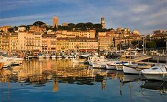 Cannes, a commune of France, is a very busy tourist destination. Designer shops, palatial hotels, luxury cruise boats, and sandy beaches are the peculiarities of this city.