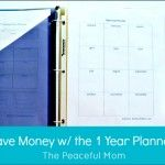 Save Money With the One Year Planner Photo--The Peaceful Mom