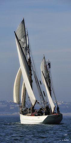 """""""Le Mutin"""" #sailing"""