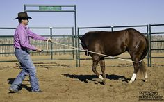 Exercise #13: Turn and Go  Goal: To be able to wrap the lead rope around the colt's body, gently apply pressure to the lead rope and have him follow the feel to turn 360-degrees and depart onto the circle with energy.  https://www.downunderhorsemanship.com/Store/Product/MEDIA/D/2896/
