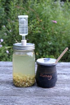There are a lot of great reasons to make a micro batch mead. A super tiny batch is a great place to start if you're just learning the process of mead making or if your an experienced brewer but you're trying out something experimental. Medicinal brews, using medicinal herbs, are also a great match for...Read More