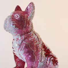 French Bruno by J. Dinosaur Stuffed Animal, French, Animals, Rosario, Bulldog Breeds, Kunst, Animales, French People, Animaux