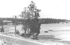 Warners Bay Foreshore