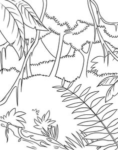 Coloring Pictures Of Rainforest Animals - Coloring Pictures Of Rainforest Animals, Coloring Pages Rainforest Animals Coloring Page Forest Coloring Pages, Leaf Coloring Page, Online Coloring Pages, Animal Coloring Pages, Colouring Pages, Coloring Pages For Kids, Forest Drawing Easy, Jungle Drawing, Amazon Animals