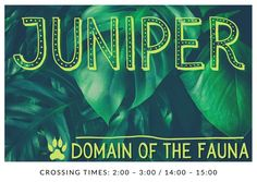 A banner image depicting the domain of Juniper from The Cruel Gods. Banner Images, Novels, Neon Signs, Sky, Fantasy, Movie Posters, Heaven, Heavens, Film Poster