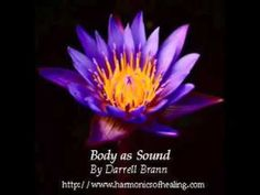 Body as Sound - Darrell Brann