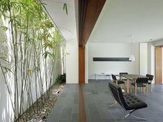 Indoor Vertical Garden Design for home Decor by IP Design Studio, Delhi