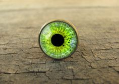 I create this eye ring using an beautifully printed artwork, bronze base ring and a clear glass dome. Eye jewelry will be lovely gift for everyone.  --- Measurements --- Glass dome width - 16 mm /...