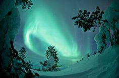 "wonderous-world: "" Aurora Borealis in Sodankylä, Finland by Visit Finland """