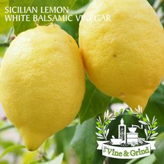 Much has been said about how beneficial lemon is combined with other ingredients improve some health disorders, clean the liver and eliminate toxins but little White Balsamic Vinegar, White Vinegar, Gastro, Sicilian, Mixed Drinks, Salad Dressing, Disorders, Health And Beauty, Lemon