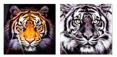 Resultado de imagen para cuadros modernos de tigres
