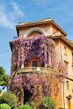 Balconies…     Rome, Italy by Ricardo