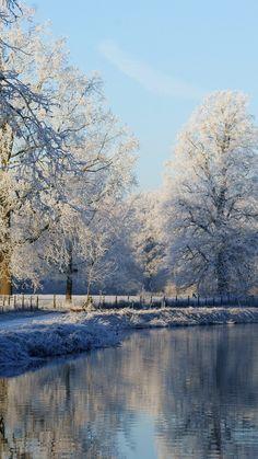 Frozen Mist Snow Forest iPhone 6 plus wallpaper - trees, lake #frozen   #iPhone #6 #plus #wallpaper