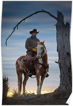 865 Best Country Way Of Life Images Cowboy Cowgirl Cowboys Horses